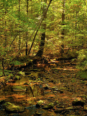 Photograph - Pa At Creek In Early Autumn 2 by Raymond Salani III