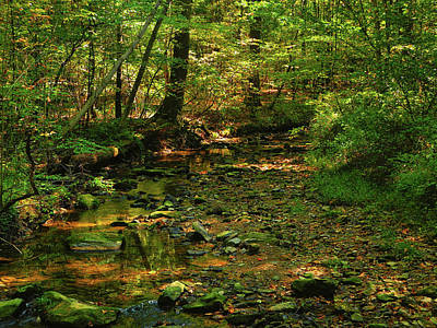 Photograph - Pa At Creek In Early Autumn by Raymond Salani III