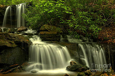 Photograph - Pa State Forest Cascades by Adam Jewell