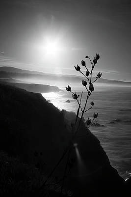 Photograph - Pacific Coast B/w by Wes Jimerson