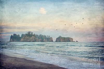 Comedian Drawings - Pacific Coast Sea Stacks by Joan McCool