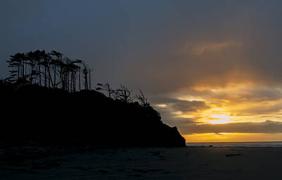 Photograph - Pacific Coast Silhouette by Loree Johnson