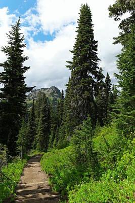Pacific Crest Trail Towards American Ridge Art Print