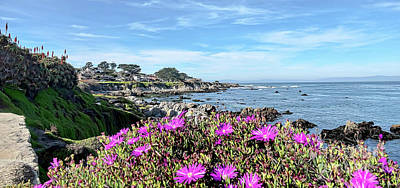 Photograph - Pacific Grove  by Gina Savage