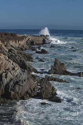 Photograph - Pacific Grove Seascape by Stan and Anne Foster