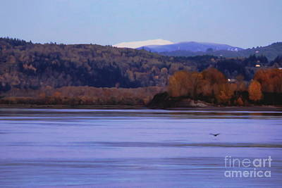 Photograph - Pacific Northwest Landscape by Erica Hanel