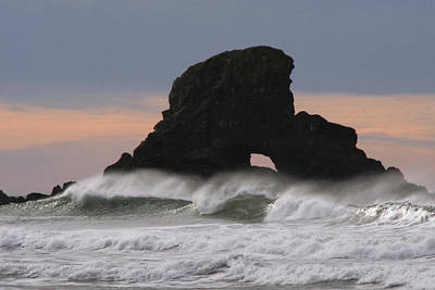 Photograph - Pacific Northwest Waves by Wes and Dotty Weber