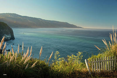 Photograph - Pacific Ocean, Big Sur by Dana Sohr