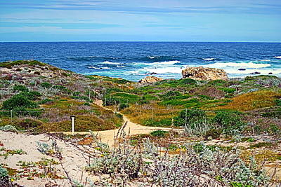 Photograph - Pacific Pathway by Joyce Dickens