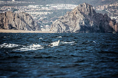 Photograph - Pacific Rocks Of Cabo, Mx by Deana Glenz
