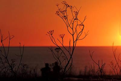 Digital Art - Pacific Sunset by Grace Dillon