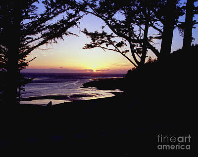 Photograph - Pacific Sunset by Rex E Ater