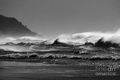 Photograph - Pacific Winter Winds by Moore Northwest Images