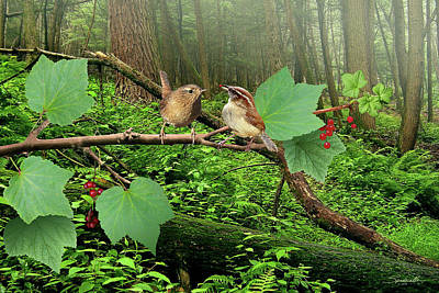 Digital Art - Pacific Wrens And Red Currants by Spadecaller