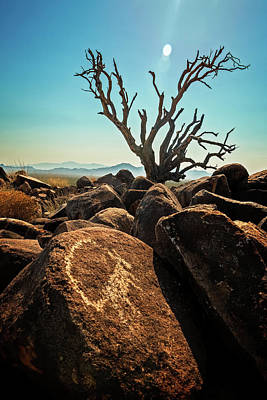 Photograph - Pack Mule Petroglyph by James Capo