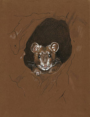 Painting - Pack Rat by Masha Batkova