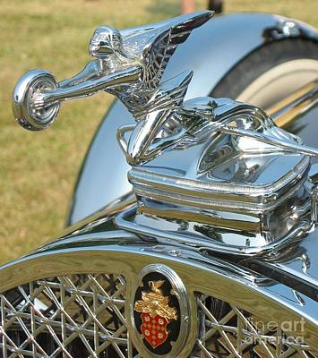 Photograph - Packard Hood Ornament by Neil Zimmerman