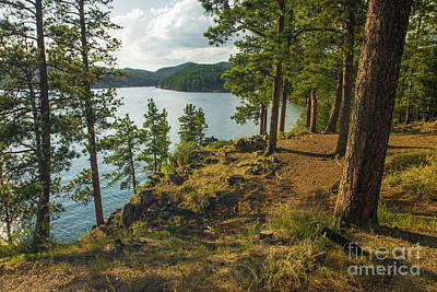 Nikki Vig Royalty-Free and Rights-Managed Images - Pactola Lake South Dakota by Nikki Vig