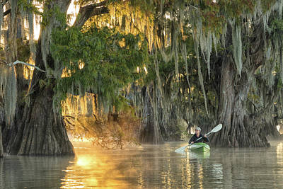 Cypress Swamp Photograph - Paddle The Bayou by Christian Heeb