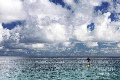 Break Fast Photograph - Paddling In The Open by Vince Cavataio - Printscapes