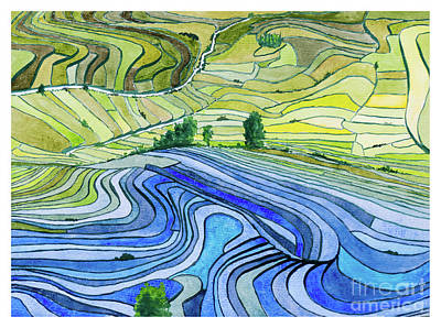 Painting - Paddy Fields by Rod Jones