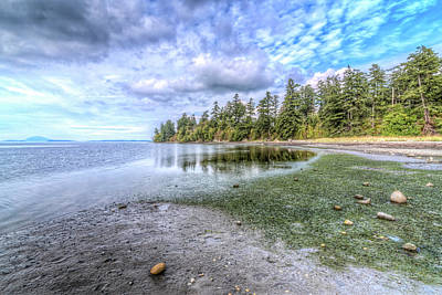 Photograph - Padilla Bay by Spencer McDonald