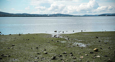 Photograph - Padilla Bay by Tom Cochran