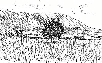 Drawing - Padul by Chani Demuijlder