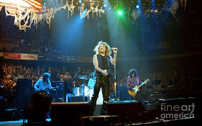 Robert Plant Photograph - Page N Plant-0016 by Timothy Bischoff
