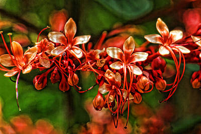 Photograph - Pagoda Flower by HH Photography of Florida
