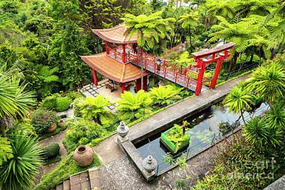 Photograph - Pagoda Pool by Brenda Kean
