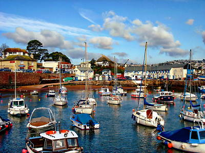 Photograph - Paignton Harbor by Anthony Dezenzio