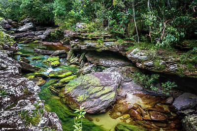 Photograph - Pailones Cano Cristales La Macarena Colombia by Adam Rainoff