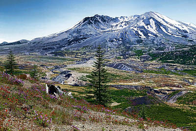 Photograph - Paint Brush Mt St Helens by Athena Mckinzie
