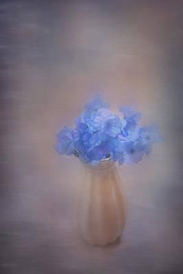 Photograph - Paint Dream by Elvira Pinkhas