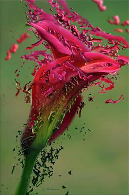 Digital Art - Paint Flower by Jos Verhoeven