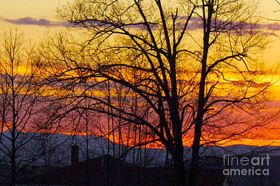 Paint Night Sunset Art Print by Alice Mainville