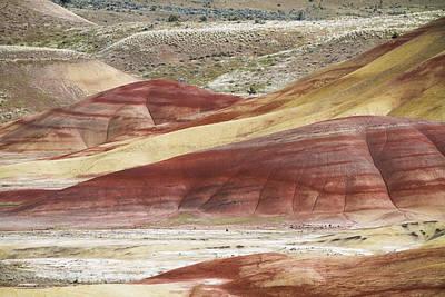 Photograph - Paint Palette by Windy Corduroy