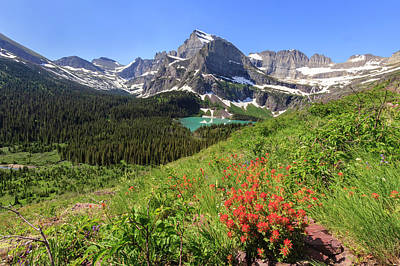 Photograph - Paintbrush At Grinnell Lake Overlook by Jack Bell