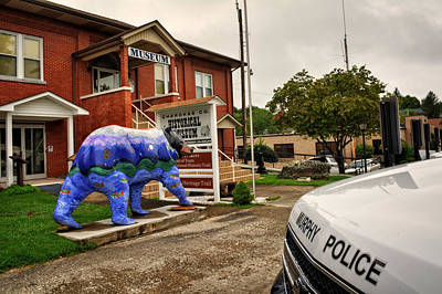 Police Art Photograph - Painted Bear In Murphy by Greg Mimbs