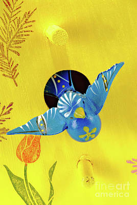 Photograph - Painted Blue Bird And A Yellow Birdhouse by Vizual Studio
