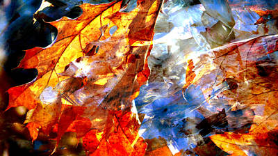 Photograph - Painted Branches Abstract 1 by Anita Burgermeister