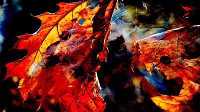 Photograph - Painted Branches Abstract 3 by Anita Burgermeister