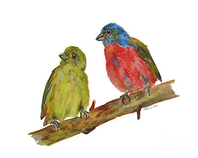 Painting - Painted Bunting Couple by Olga Hamilton