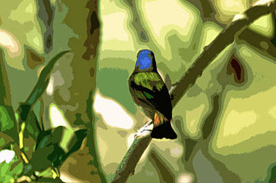 Bunting Digital Art - Painted Bunting Cutout by Dale Chapel