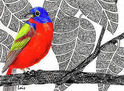 Bunting Drawing - Painted Bunting by Lois Davis