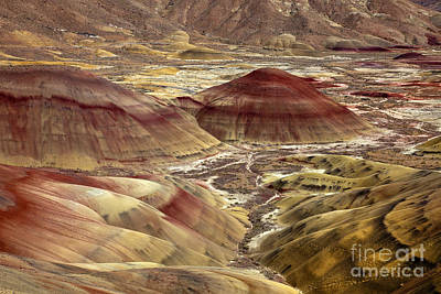 Painted Desert Photograph - Painted By Nature by Mike  Dawson