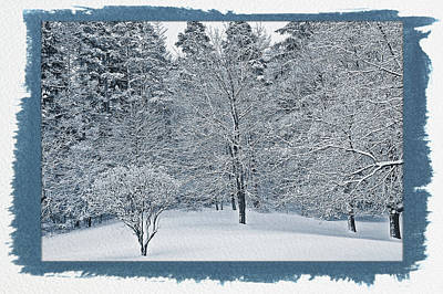 Photograph - Painted Cyanotype Fresh Snow Scene by Aimee L Maher Photography and Art Visit ALMGallerydotcom