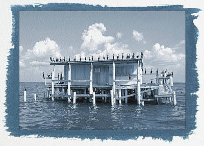Photograph - Painted Cyanotype No Vacancy At The Stilt House by Aimee L Maher Photography and Art Visit ALMGallerydotcom