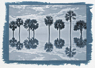 Photograph - Painted Cyanotype Palm Tree Reflection by Aimee L Maher Photography and Art Visit ALMGallerydotcom